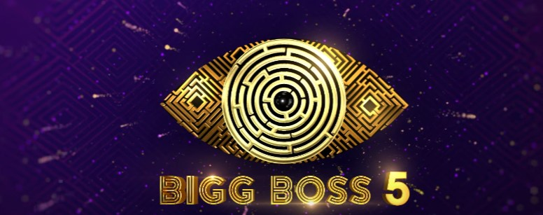 Bigg Boss 5 Telugu Vote Percentage